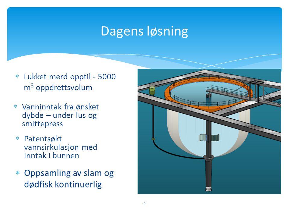  Lukket merd opptil - 5000 m 3 oppdrettsvolum 4 Dagens løsning  Vanninntak fra ønsket dybde – under lus og smittepress  Patentsøkt vannsirkulasjon