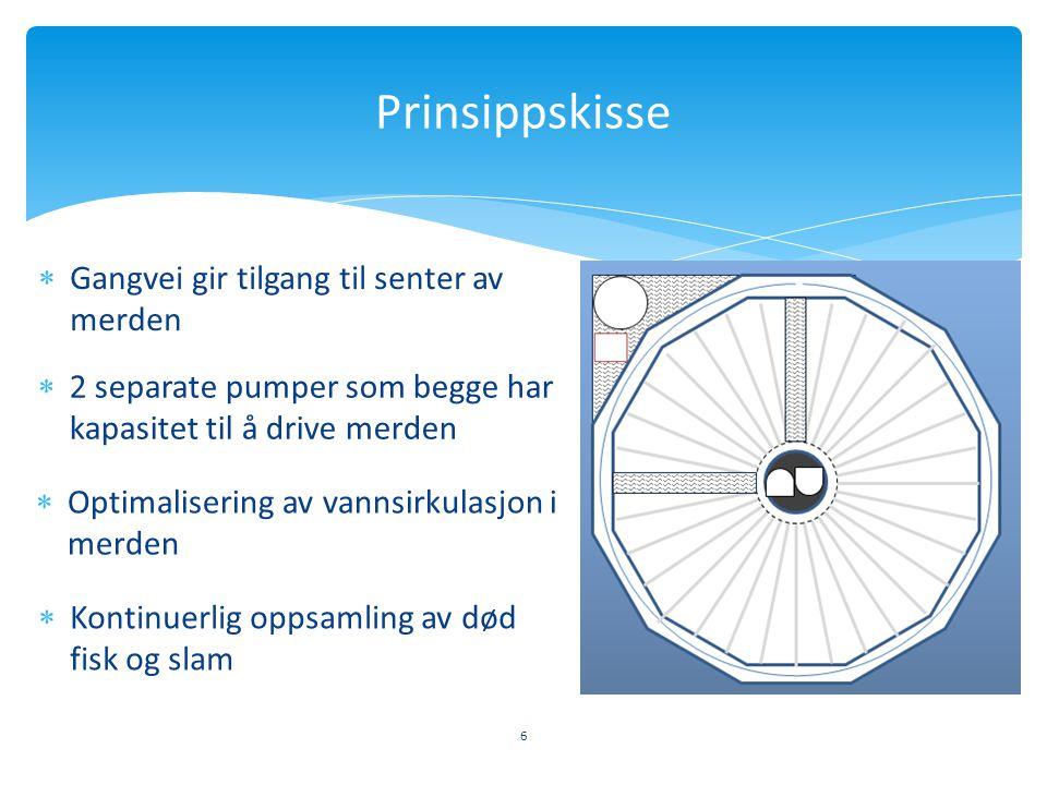6 Prinsippskisse  Gangvei gir tilgang til senter av merden  Kontinuerlig oppsamling av død fisk og slam  2 separate pumper som begge har kapasitet