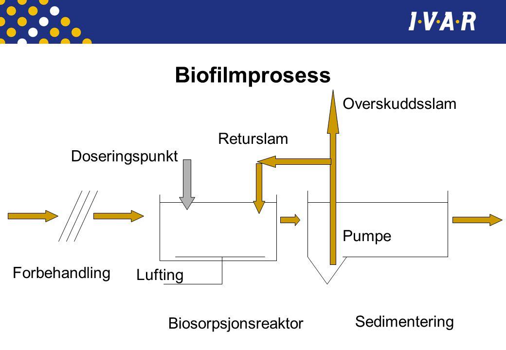 Biofilmprosess Forbehandling Biosorpsjonsreaktor Sedimentering Overskuddsslam Returslam Pumpe Doseringspunkt Lufting