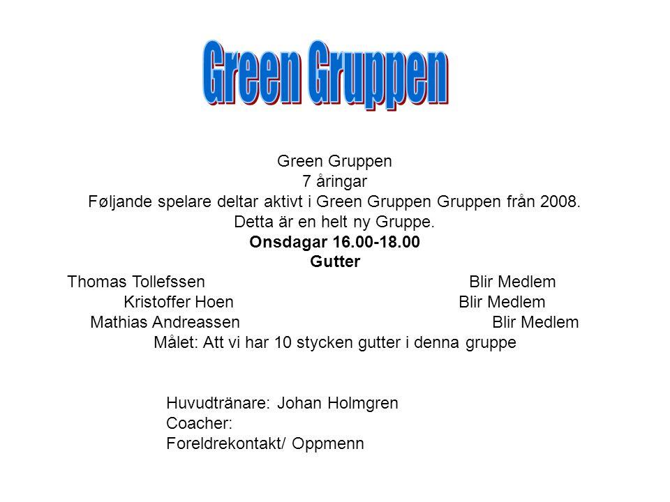 Green Gruppen 7 åringar Føljande spelare deltar aktivt i Green Gruppen Gruppen från 2008.