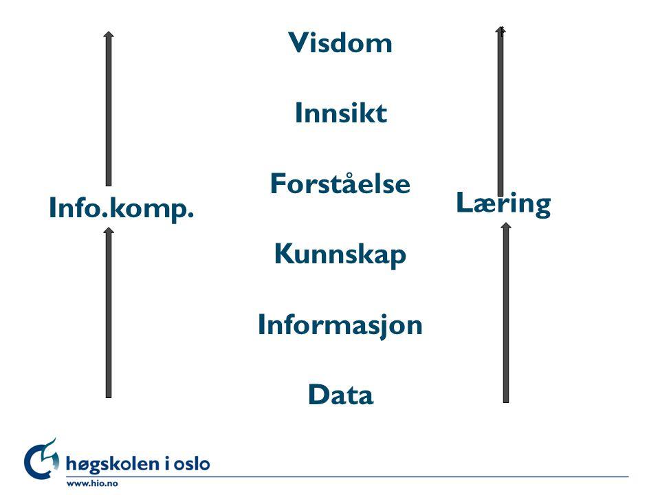 Visdom Innsikt Forståelse Kunnskap Informasjon Data Info.komp. Læring