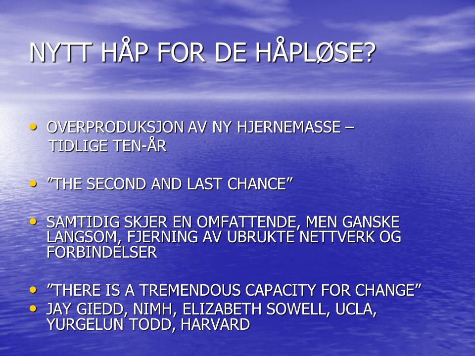"""NYTT HÅP FOR DE HÅPLØSE? OVERPRODUKSJON AV NY HJERNEMASSE – OVERPRODUKSJON AV NY HJERNEMASSE – TIDLIGE TEN-ÅR TIDLIGE TEN-ÅR """"THE SECOND AND LAST CHAN"""