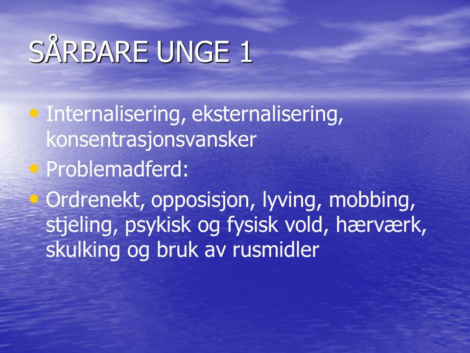 SÅRBARE UNGE 1 Internalisering, eksternalisering, konsentrasjonsvansker Problemadferd: Ordrenekt, opposisjon, lyving, mobbing, stjeling, psykisk og fy