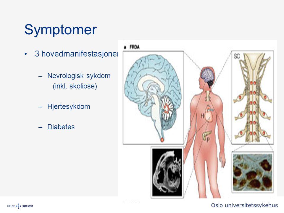 Symptomer 3 hovedmanifestasjoner –Nevrologisk sykdom (inkl. skoliose) –Hjertesykdom –Diabetes