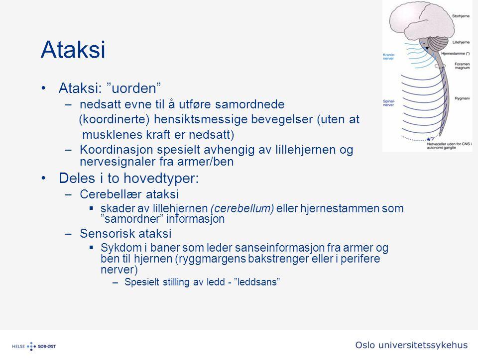 """Ataksi Ataksi: """"uorden"""" –nedsatt evne til å utføre samordnede (koordinerte) hensiktsmessige bevegelser (uten at musklenes kraft er nedsatt) –Koordinas"""