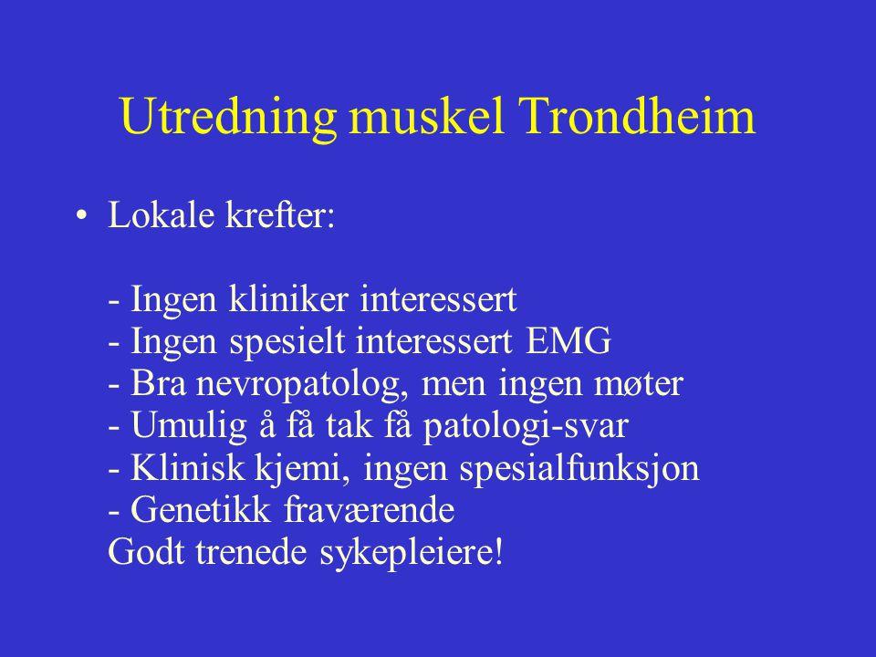Utredning muskel Trondheim Lokale krefter: - Ingen kliniker interessert - Ingen spesielt interessert EMG - Bra nevropatolog, men ingen møter - Umulig å få tak få patologi-svar - Klinisk kjemi, ingen spesialfunksjon - Genetikk fraværende Godt trenede sykepleiere!