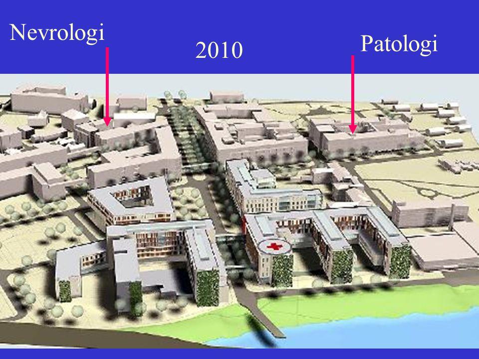 2010 Patologi Nevrologi