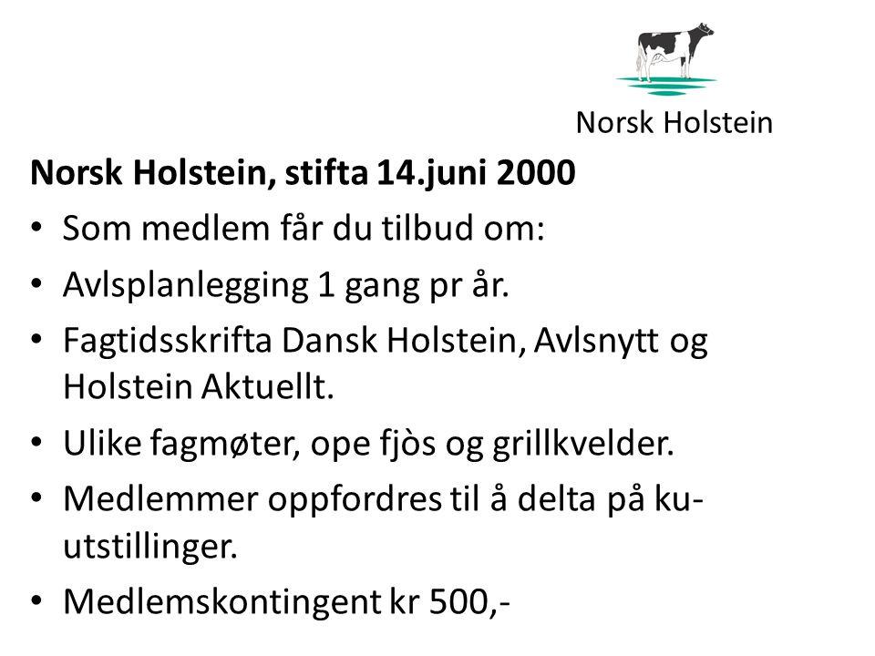 Norsk Holstein Norsk Holstein, stifta 14.juni 2000 Som medlem får du tilbud om: Avlsplanlegging 1 gang pr år.