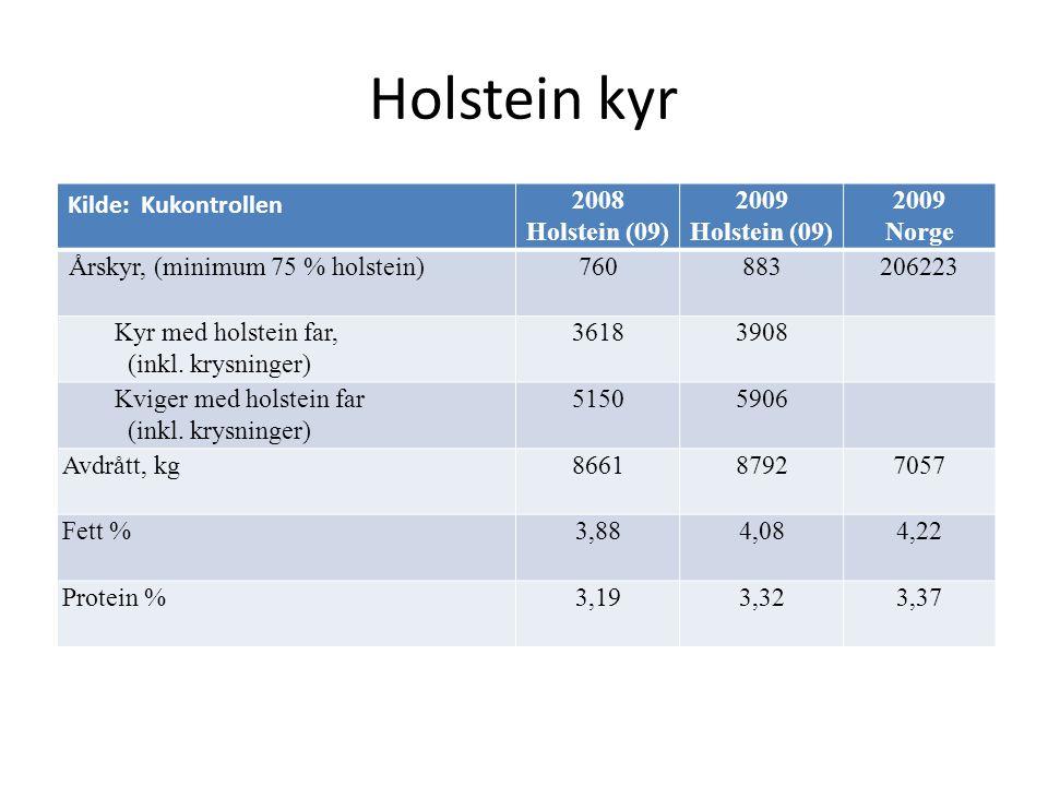 Holstein kyr Kilde: Kukontrollen 2008 Holstein (09) 2009 Holstein (09) 2009 Norge Årskyr, (minimum 75 % holstein)760883206223 Kyr med holstein far, (inkl.