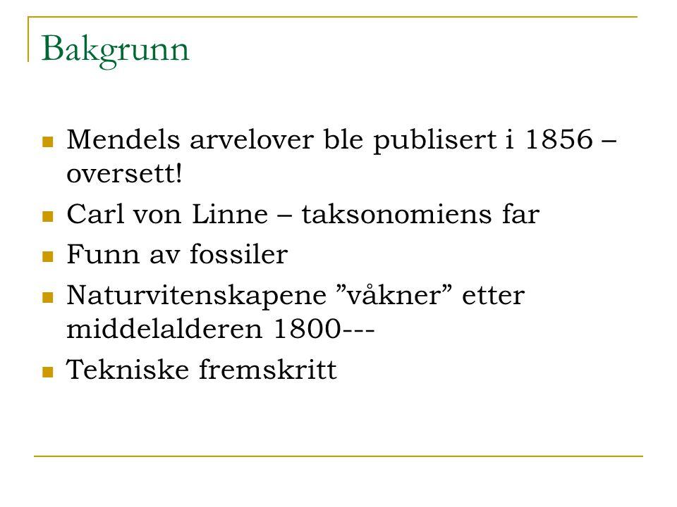 """Bakgrunn Mendels arvelover ble publisert i 1856 – oversett! Carl von Linne – taksonomiens far Funn av fossiler Naturvitenskapene """"våkner"""" etter middel"""