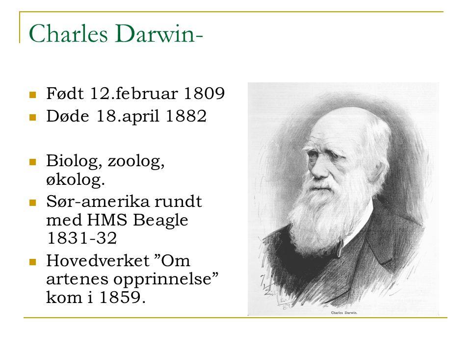 "Charles Darwin- Født 12.februar 1809 Døde 18.april 1882 Biolog, zoolog, økolog. Sør-amerika rundt med HMS Beagle 1831-32 Hovedverket ""Om artenes oppri"