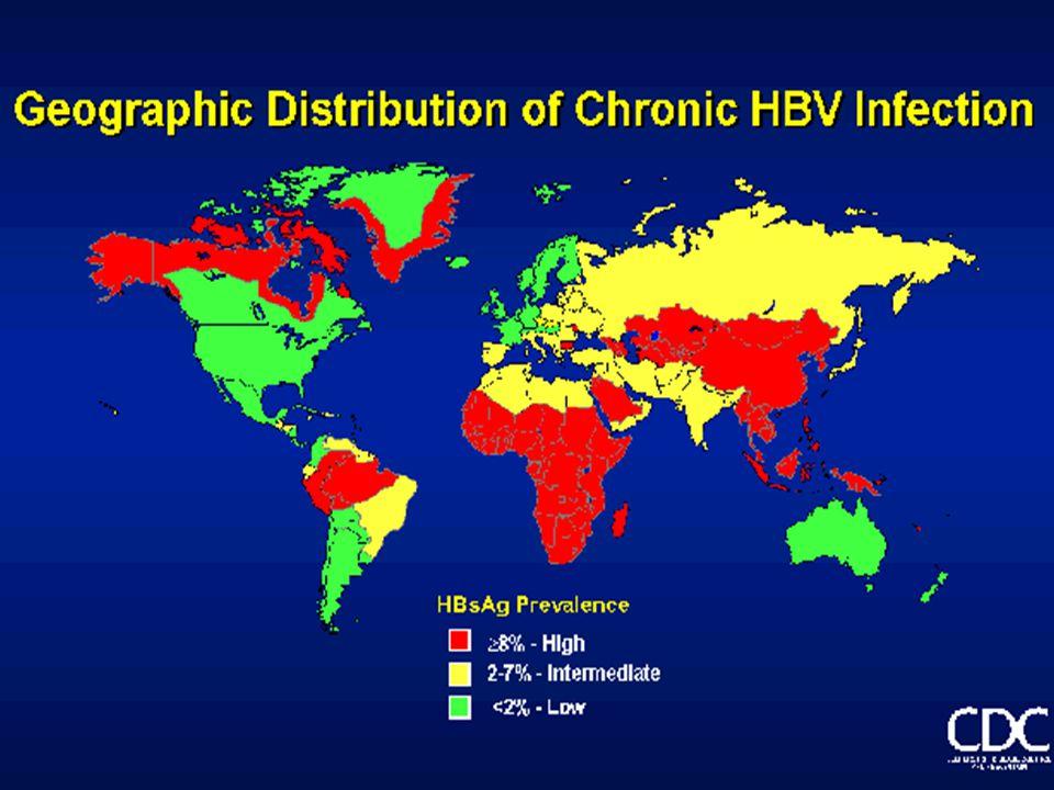 HBV-smitte hos hustandskontakter – meldt MSIS1992-2003 (N=15) 7 foreldre smittet av ivm barn (ikke erkjent stikkskade) 3 foreldre smittet av adoptivbarn 2 barn smittet av foreldre (en stoffmisbr.