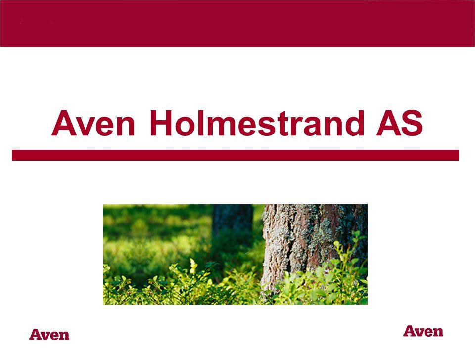 Aven Holmestrand AS