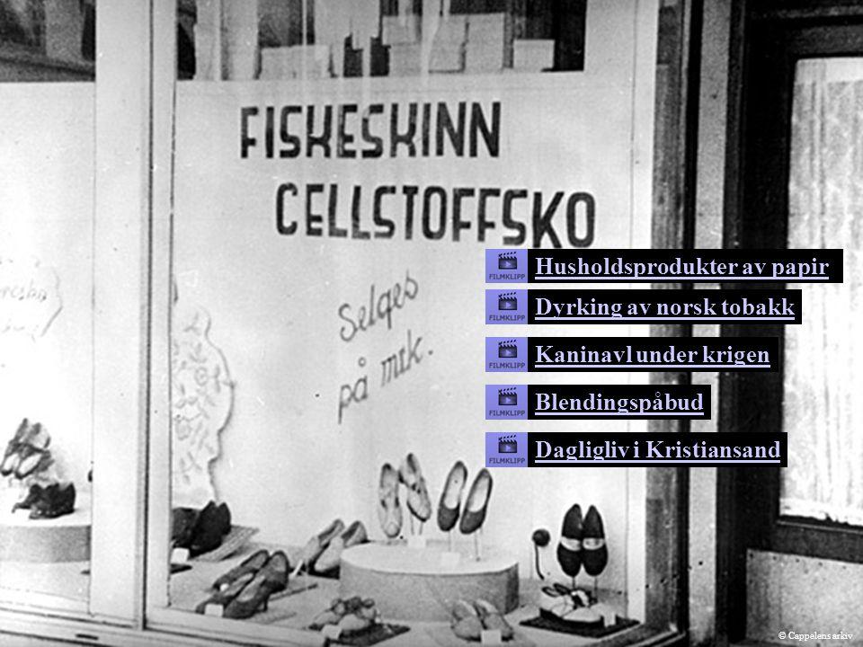 Kaninavl under krigen Husholdsprodukter av papir Dyrking av norsk tobakk Blendingspåbud Dagligliv i Kristiansand © Cappelens arkiv