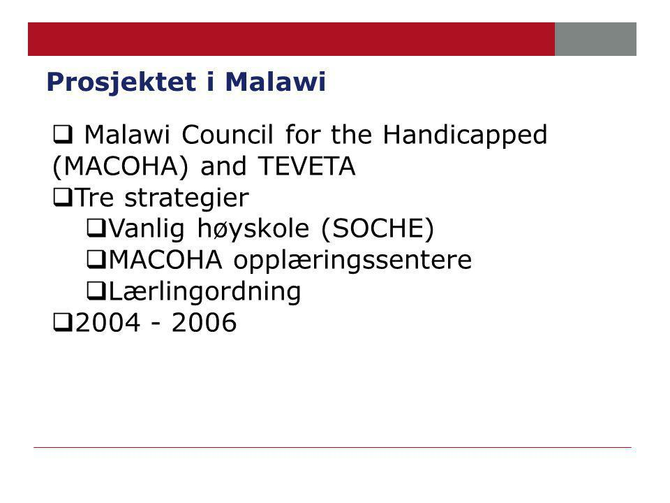 Prosjektet i Malawi  Malawi Council for the Handicapped (MACOHA) and TEVETA  Tre strategier  Vanlig høyskole (SOCHE)  MACOHA opplæringssentere  Lærlingordning  2004 - 2006
