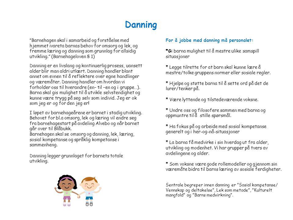 """Danning """" Barnehagen skal i samarbeid og forståelse med hjemmet ivareta barnas behov for omsorg og lek, og fremme læring og danning som grunnlag for a"""