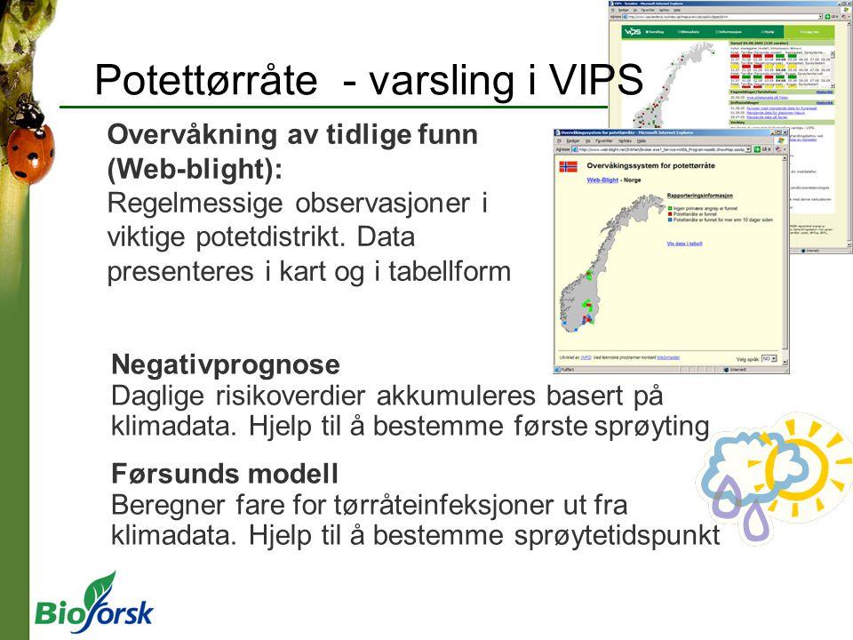 Potettørråte - varsling i VIPS Overvåkning av tidlige funn (Web-blight): Regelmessige observasjoner i viktige potetdistrikt.