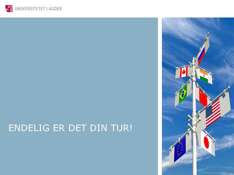 12 Europa – Erasmus-stipend Fyll ut 3 skjemaer i Fronter - Erasmus stipend (Learning Agreement, Lønn og godtgjørelser og Erasmus-kontrakt) Lever skjemaene til Internasjonal avdeling Stipendet utbetales i februar