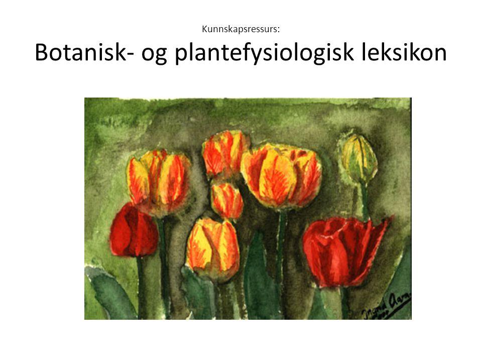 Kunnskapsressurs: Botanisk- og plantefysiologisk leksikon