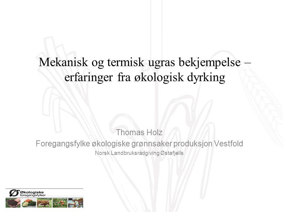 P Mekanisk og termisk ugras bekjempelse – erfaringer fra økologisk dyrking Thomas Holz Foregangsfylke økologiske grønnsaker produksjon Vestfold Norsk