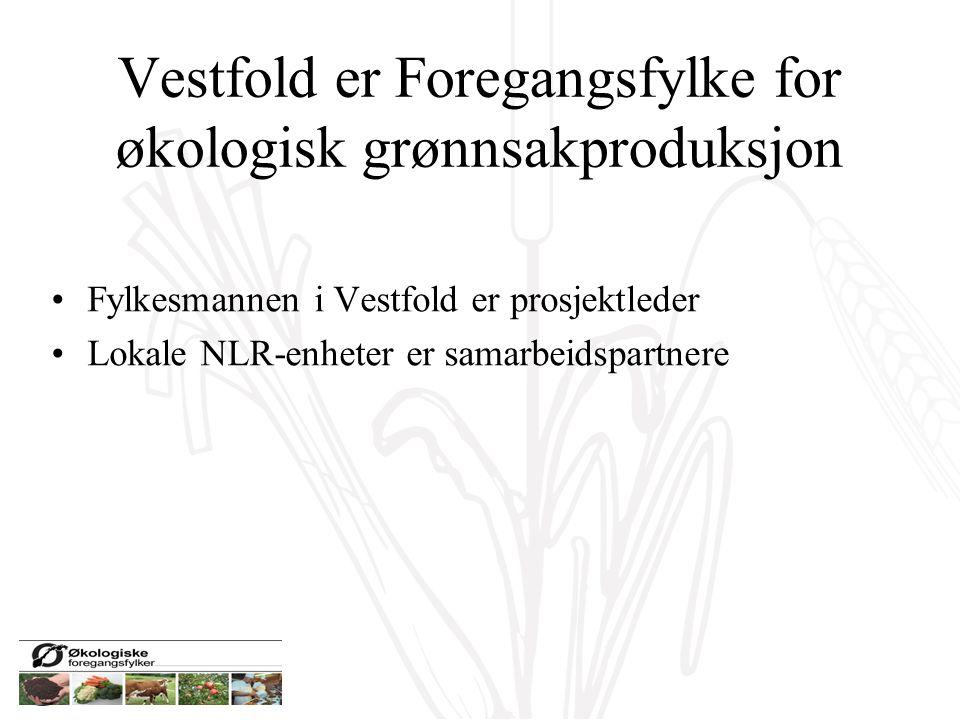 Vestfold er Foregangsfylke for økologisk grønnsakproduksjon Fylkesmannen i Vestfold er prosjektleder Lokale NLR-enheter er samarbeidspartnere