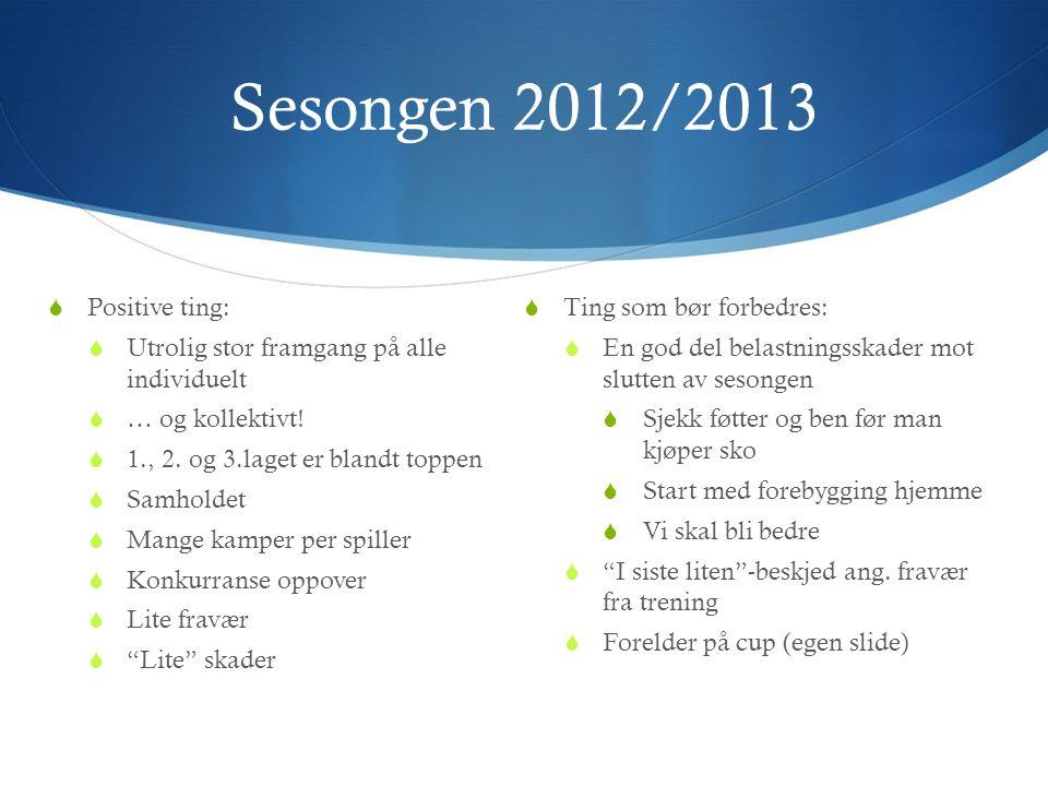 Sesongen 2012/2013  Positive ting:  Utrolig stor framgang på alle individuelt  … og kollektivt!  1., 2. og 3.laget er blandt toppen  Samholdet 