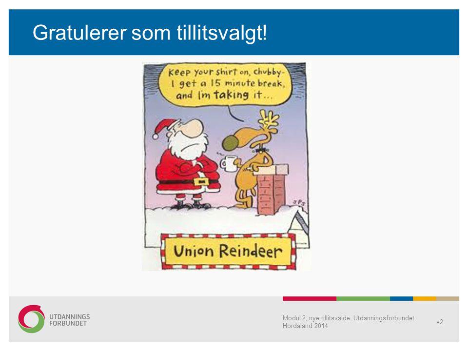 Gratulerer som tillitsvalgt! Modul 2, nye tillitsvalde, Utdanningsforbundet Hordaland 2014 s2