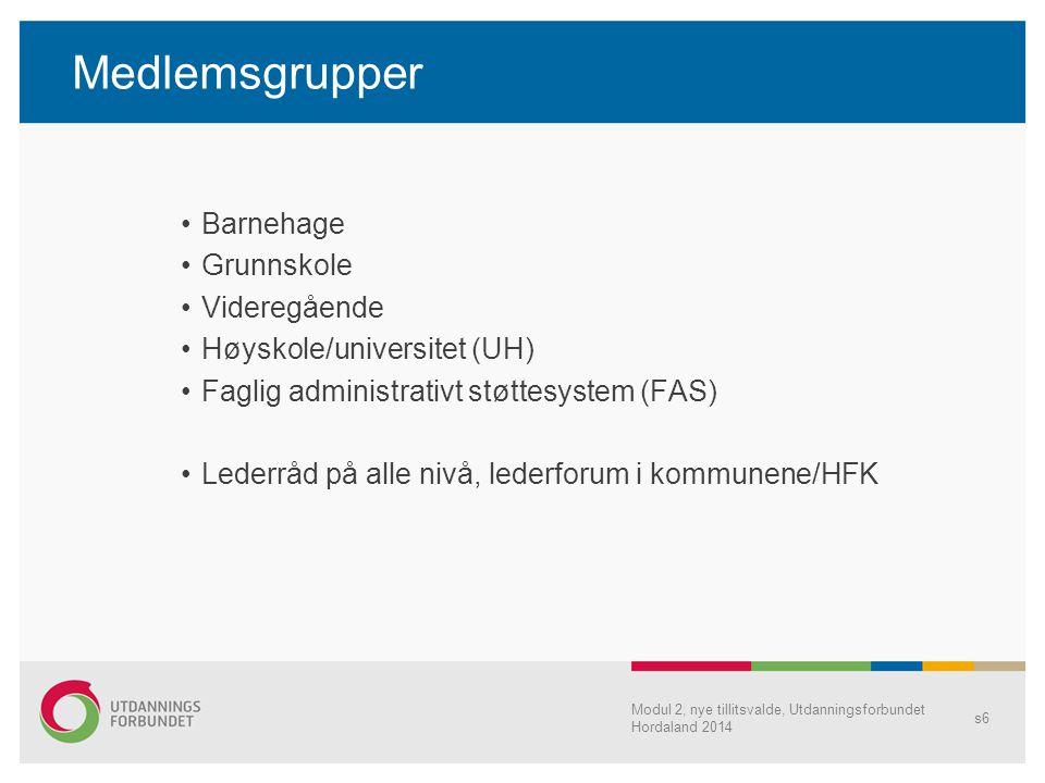 Medlemsgrupper Barnehage Grunnskole Videregående Høyskole/universitet (UH) Faglig administrativt støttesystem (FAS) Lederråd på alle nivå, lederforum