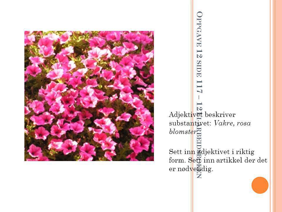 O PPGAVE 12 SIDE 117 – 121 I ARBEIDSBOKEN Adjektivet beskriver substantivet: Vakre, rosa blomster.