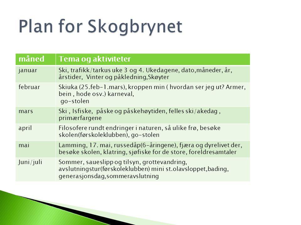 månedTema og aktiviteter januarSki, trafikk/tarkus uke 3 og 4.