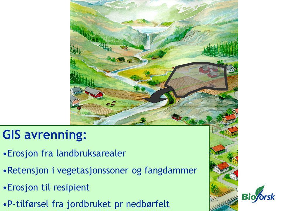GIS avrenning: Erosjon fra landbruksarealer Retensjon i vegetasjonssoner og fangdammer Erosjon til resipient P-tilførsel fra jordbruket pr nedbørfelt