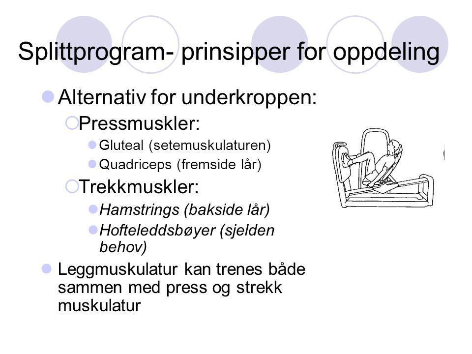 Splittprogram- prinsipper for oppdeling Alternativ for underkroppen:  Pressmuskler: Gluteal (setemuskulaturen) Quadriceps (fremside lår)  Trekkmuskler: Hamstrings (bakside lår) Hofteleddsbøyer (sjelden behov) Leggmuskulatur kan trenes både sammen med press og strekk muskulatur