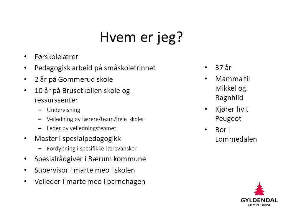 Hva gjør jeg i Bærum kommune.