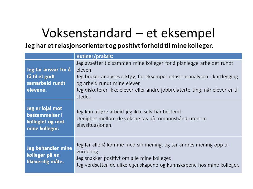 Voksenstandard – et eksempel Jeg har et relasjonsorientert og positivt forhold til mine kolleger. Rutiner/praksis: Jeg tar ansvar for å få til et godt