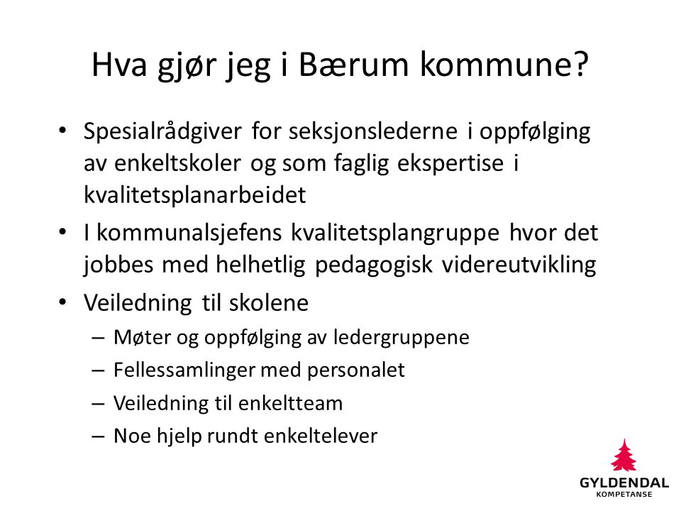 Hva gjør jeg i Bærum kommune? Spesialrådgiver for seksjonslederne i oppfølging av enkeltskoler og som faglig ekspertise i kvalitetsplanarbeidet I komm