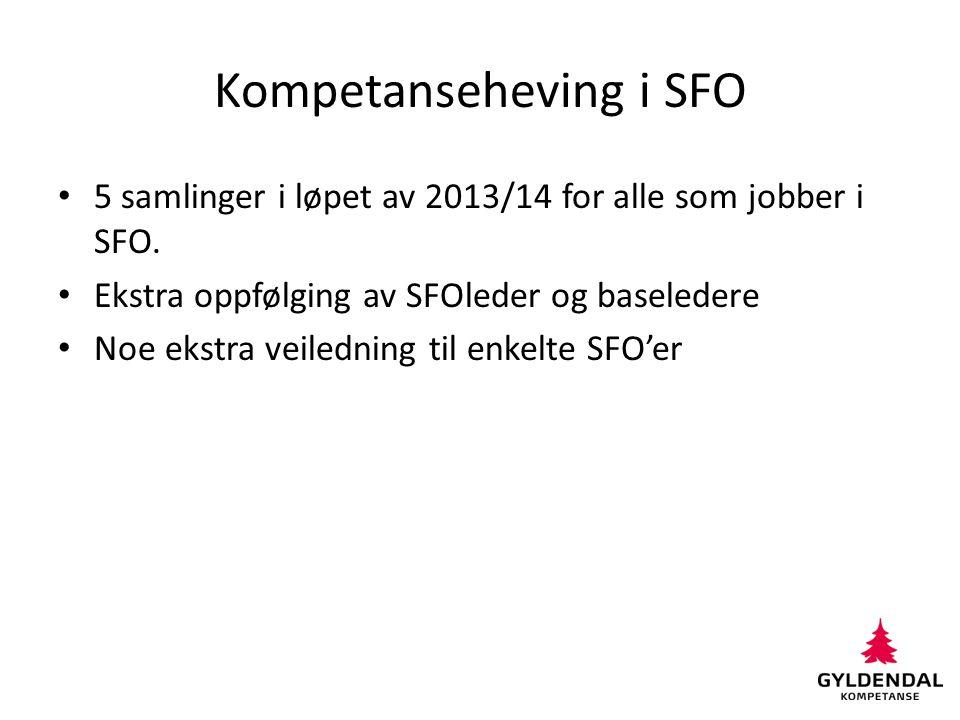 Kompetanseheving i SFO 5 samlinger i løpet av 2013/14 for alle som jobber i SFO. Ekstra oppfølging av SFOleder og baseledere Noe ekstra veiledning til