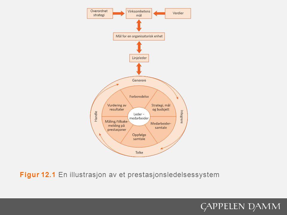Figur 12.1 En illustrasjon av et prestasjonsledelsessystem