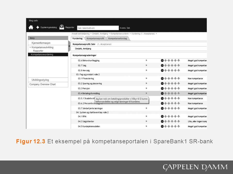Figur 12.3 Et eksempel på kompetanseportalen i SpareBank1 SR-bank