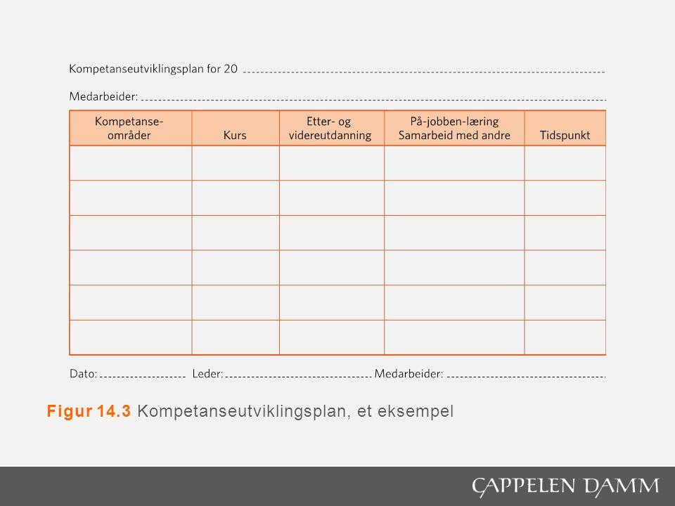 Figur 14.3 Kompetanseutviklingsplan, et eksempel