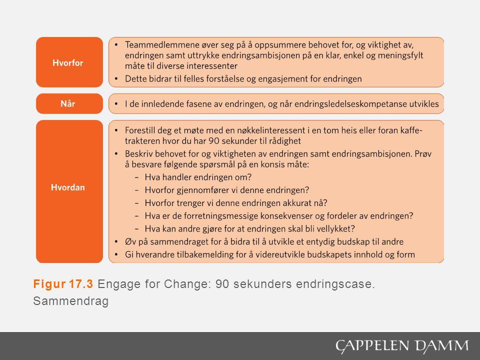 Figur 17.3 Engage for Change: 90 sekunders endringscase. Sammendrag