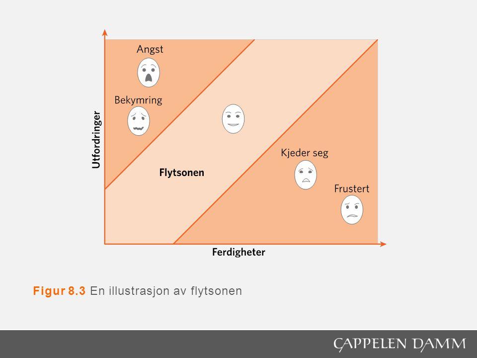 Figur 11.3 Overførbarhet av humankapital
