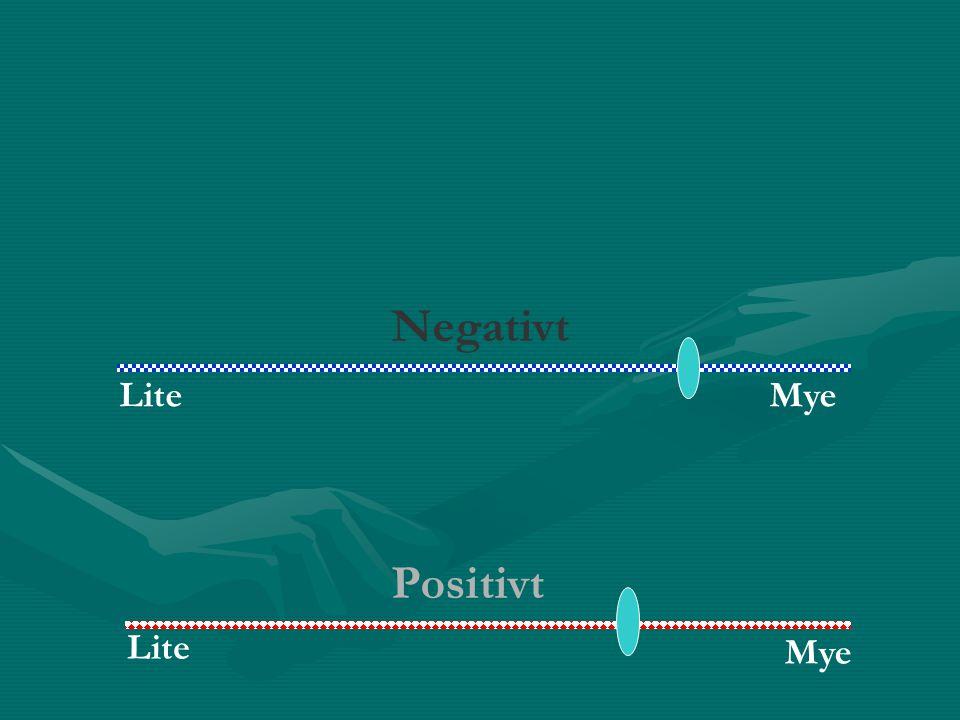 LiteMye Negativt Positivt Lite Mye