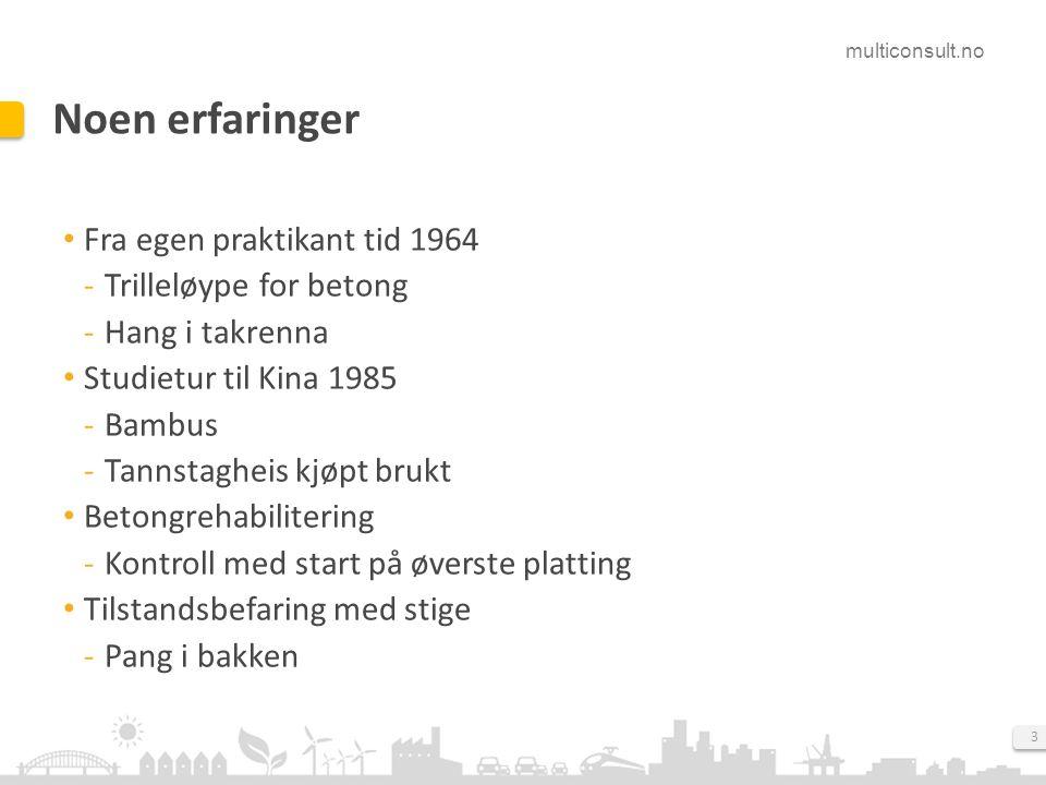 multiconsult.no 3 Noen erfaringer Fra egen praktikant tid 1964 Trilleløype for betong Hang i takrenna Studietur til Kina 1985 Bambus Tannstagheis