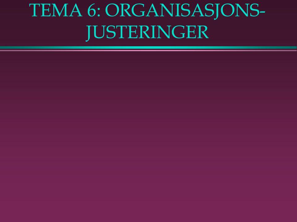 TEMA 6: ORGANISASJONS- JUSTERINGER