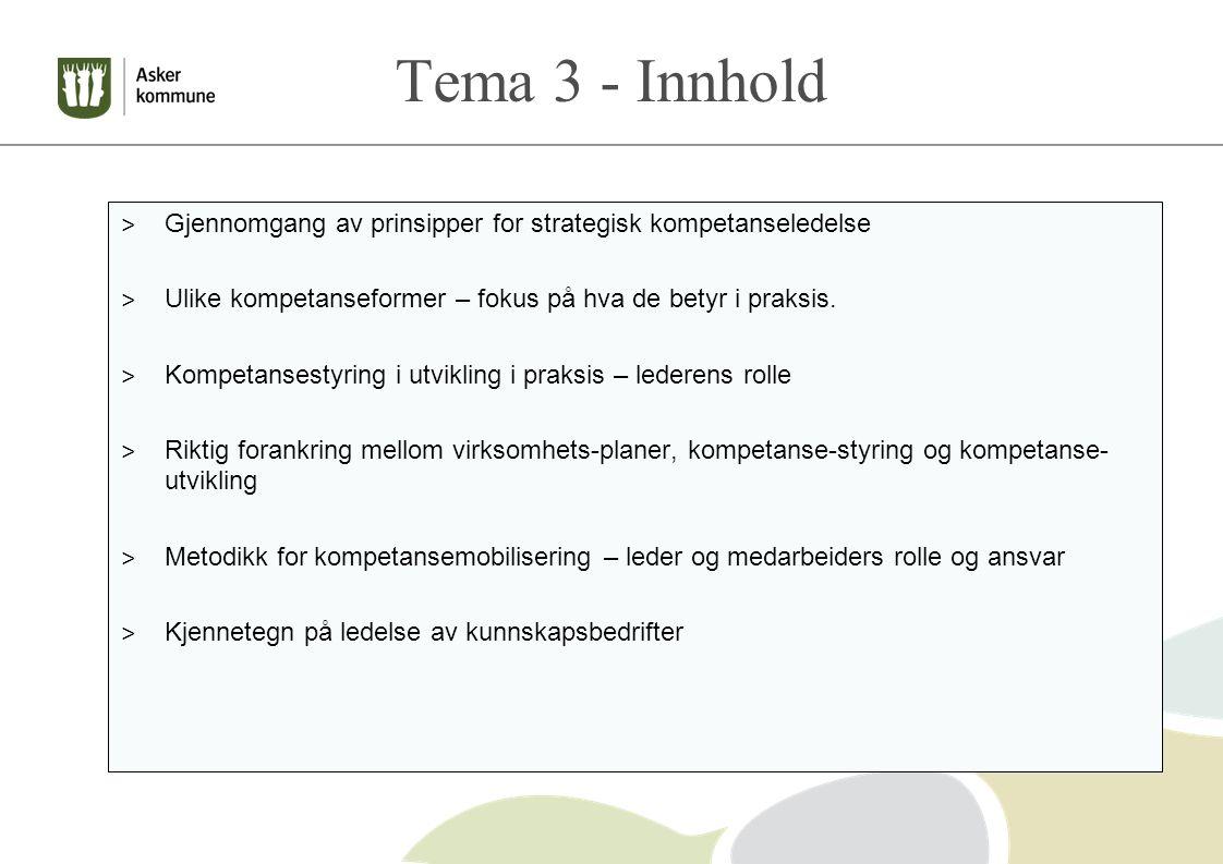 Tema 3 - Innhold > Gjennomgang av prinsipper for strategisk kompetanseledelse > Ulike kompetanseformer – fokus på hva de betyr i praksis.