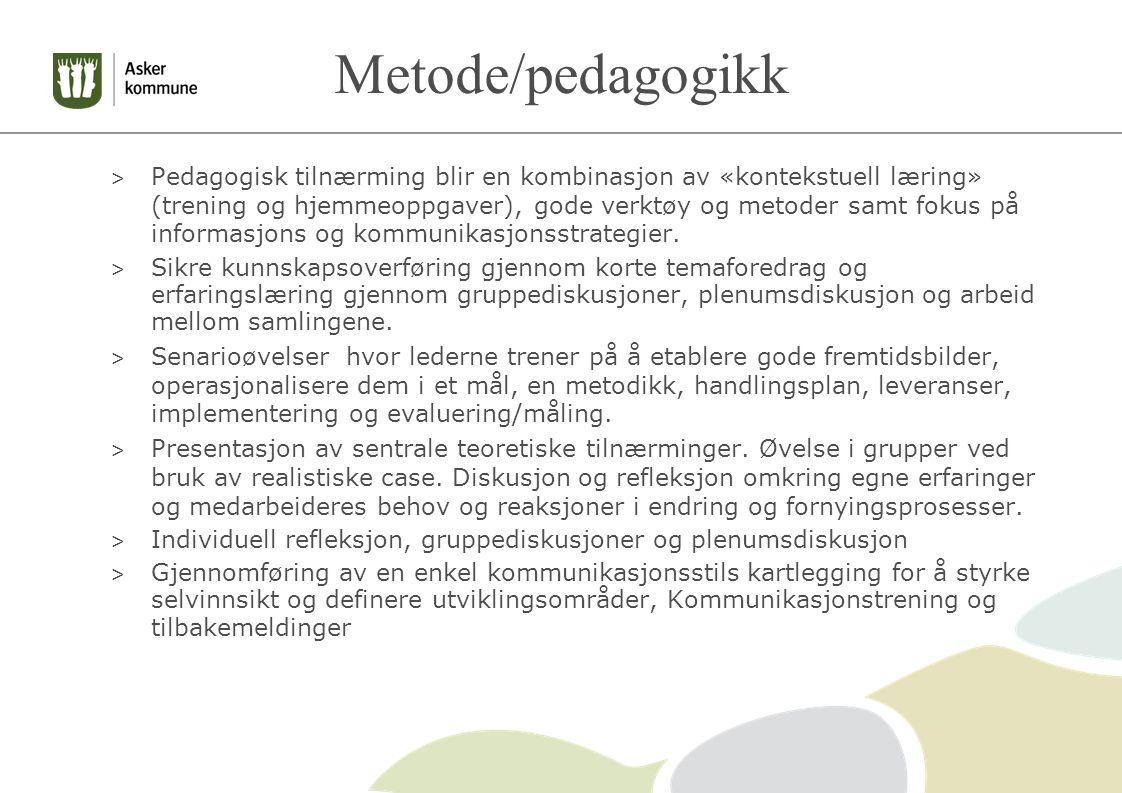 Metode/pedagogikk > Pedagogisk tilnærming blir en kombinasjon av «kontekstuell læring» (trening og hjemmeoppgaver), gode verktøy og metoder samt fokus på informasjons og kommunikasjonsstrategier.