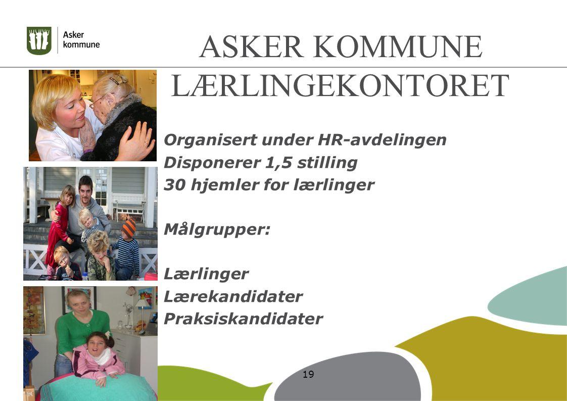 ASKER KOMMUNE LÆRLINGEKONTORET Organisert under HR-avdelingen Disponerer 1,5 stilling 30 hjemler for lærlinger Målgrupper: Lærlinger Lærekandidater Praksiskandidater 19