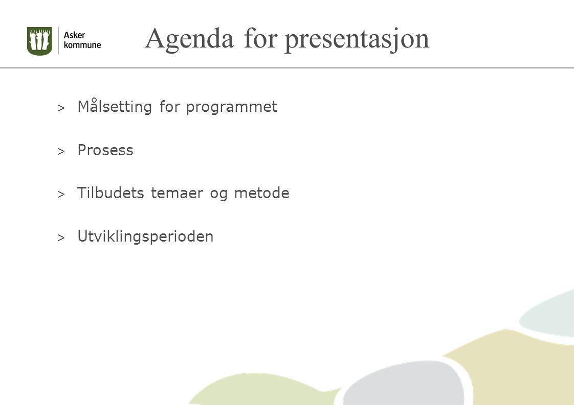 Agenda for presentasjon > Målsetting for programmet > Prosess > Tilbudets temaer og metode > Utviklingsperioden