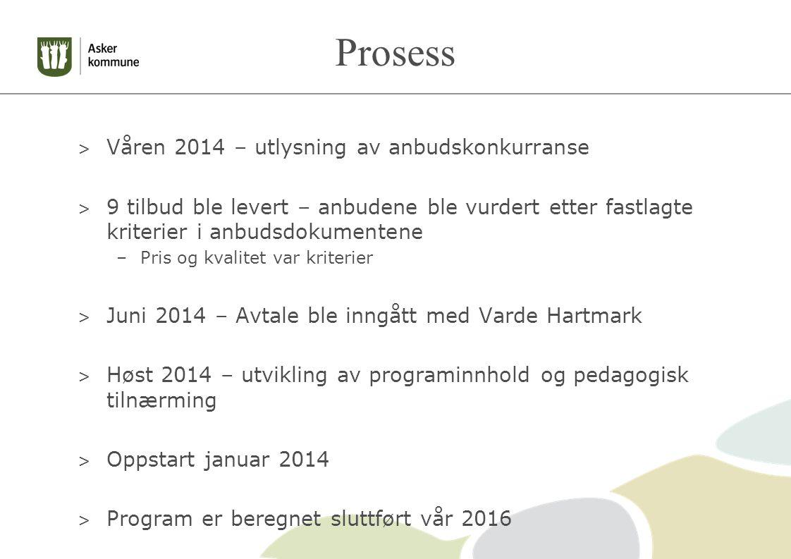 Prosess > Våren 2014 – utlysning av anbudskonkurranse > 9 tilbud ble levert – anbudene ble vurdert etter fastlagte kriterier i anbudsdokumentene –Pris og kvalitet var kriterier > Juni 2014 – Avtale ble inngått med Varde Hartmark > Høst 2014 – utvikling av programinnhold og pedagogisk tilnærming > Oppstart januar 2014 > Program er beregnet sluttført vår 2016
