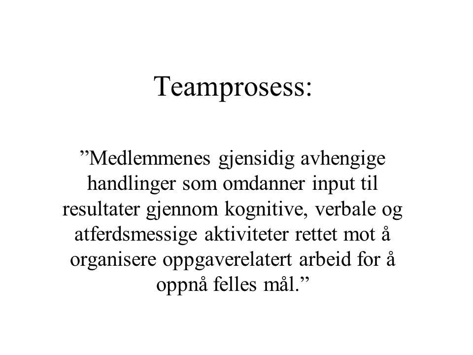 """Teamprosess: """"Medlemmenes gjensidig avhengige handlinger som omdanner input til resultater gjennom kognitive, verbale og atferdsmessige aktiviteter re"""